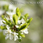 Photoquote 18 quitting is not an option