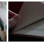 Lezen; Suzanne Vermeer - De bestemming
