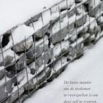 photoquote, snow, sneeuw