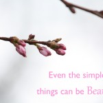 Photoquote 11 Simple beautiful