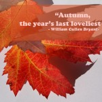 Photoquote 37 Autumn