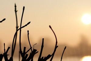Fotografietip - Gratis Lezingen