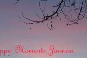 Happy Moments Januari