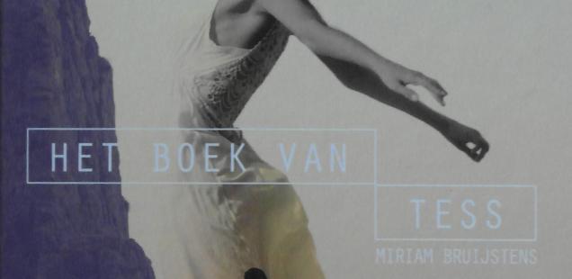 Miriam Bruijstens - Het boek van Tess