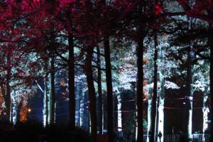 Sneak peak Glow Eindhoven
