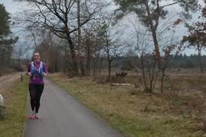 kilometers