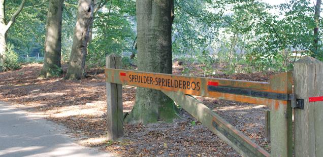 Speulder